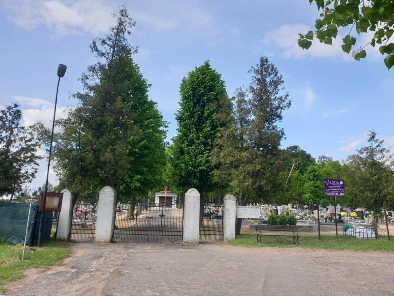 cmentarz-sedziny-3.jpg