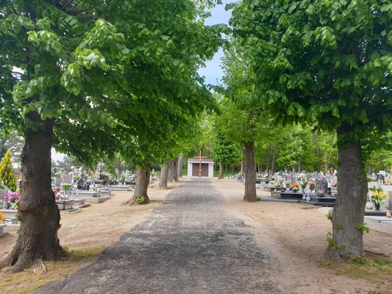 cmentarz-sedziny-2.jpg